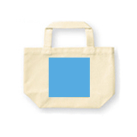 Tote s front