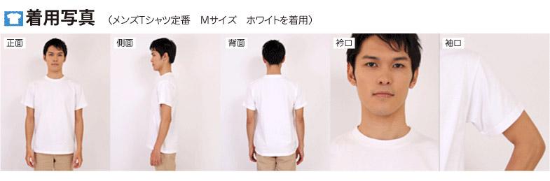 定番Tシャツの着用写真