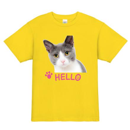 HELLO|フォトTシャツ